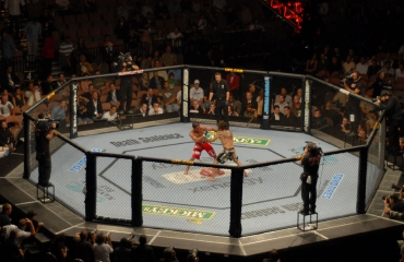 22 ноября в мексиканском городе - Монтеррее, завершилось бойцовское шоу UFC FIGHT NIGHT 78