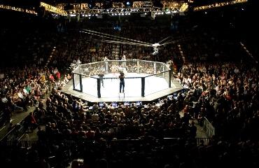 Бывший обладатель пояса UFC против действующего чемпиона